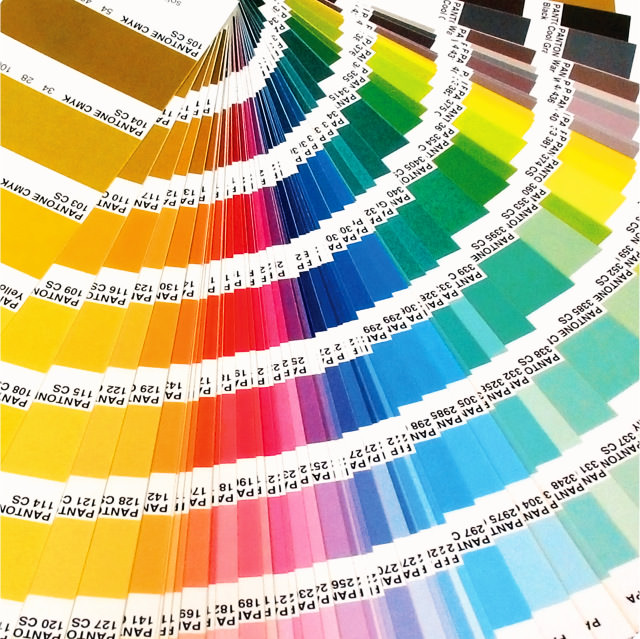 Our professional painters can paint any color you choose